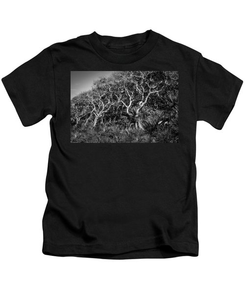 Florida Scrub Oaks Painted Bw  Kids T-Shirt