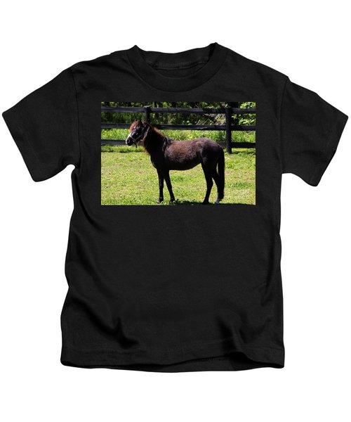 Furry Pony Kids T-Shirt