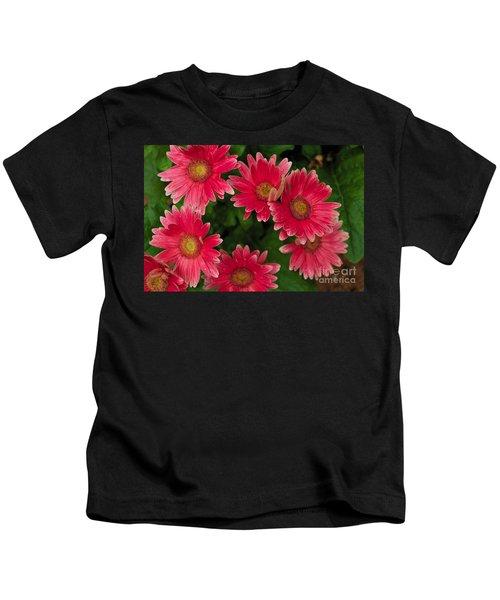 Gerber Daisies Cluster Kids T-Shirt