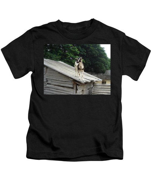 Goat On The Roof Kids T-Shirt