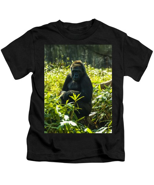 Gorilla Sitting On A Stump Kids T-Shirt