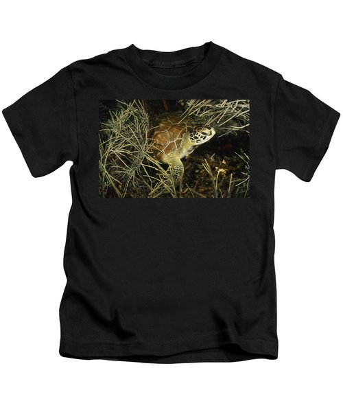 Green Turtle In Soft Corals Kids T-Shirt