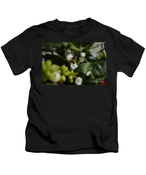 Gypsophilia Hover Fly Kids T-Shirt
