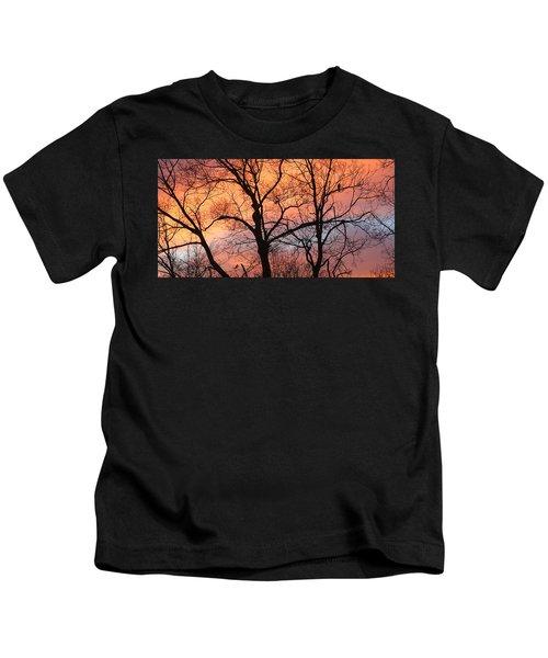 Hawk At Sunrise Kids T-Shirt