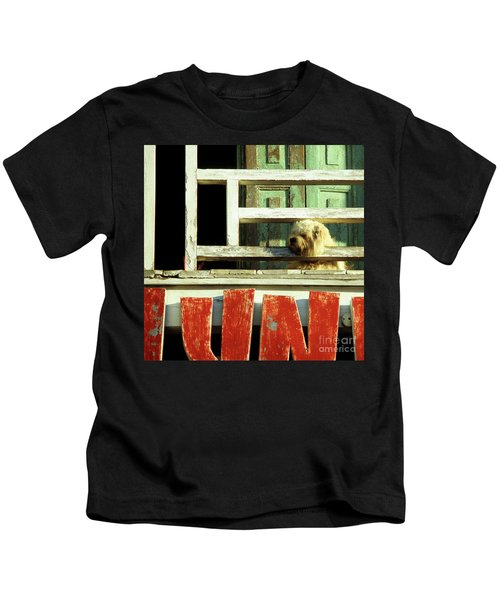 Hoi An Dog 02 Kids T-Shirt