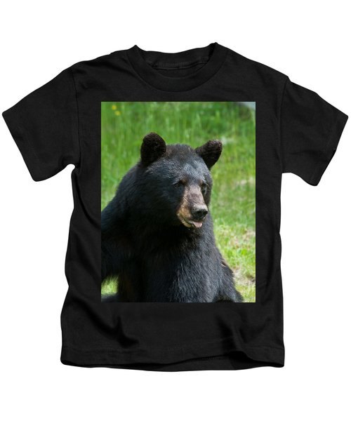 Hot Day In Bear Country Kids T-Shirt