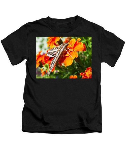 Hummingbird Moth On A Marigold Flower Kids T-Shirt