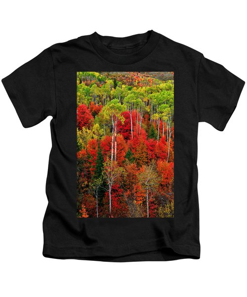 Idaho Autumn Kids T-Shirt