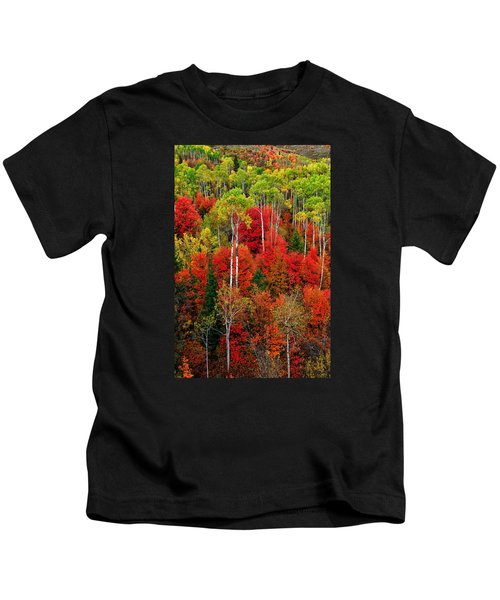 Idaho Autumn Kids T-Shirt