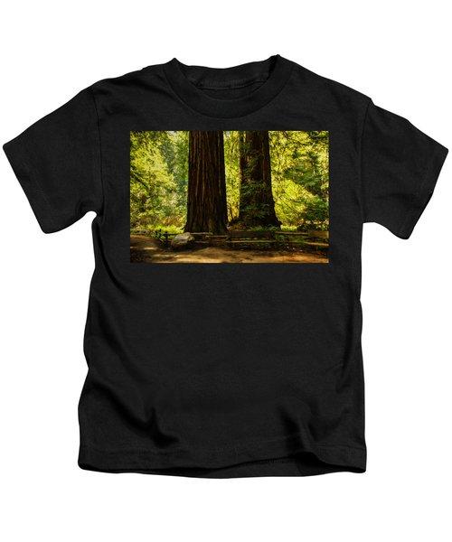 Impressions Of Muir Woods California Kids T-Shirt