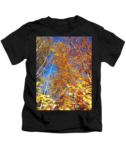 In The Forest At Fall Kids T-Shirt