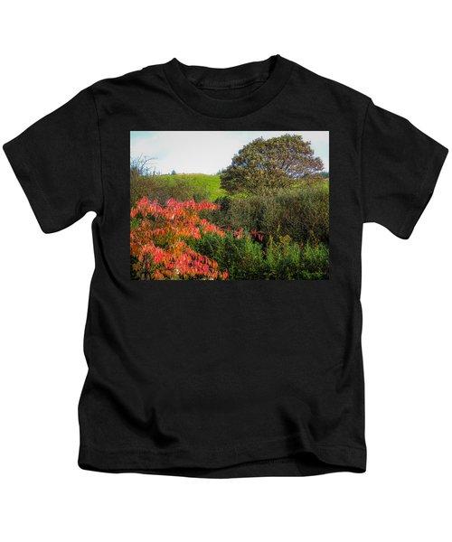 Irish Autumn Countryside Kids T-Shirt
