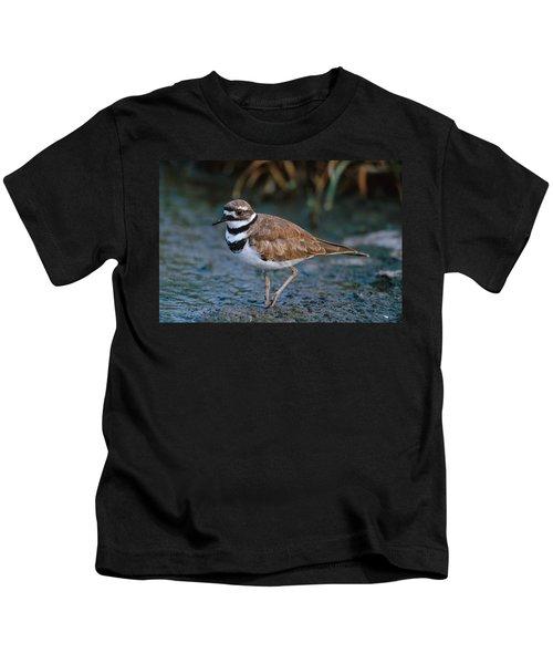 Killdeer Kids T-Shirt