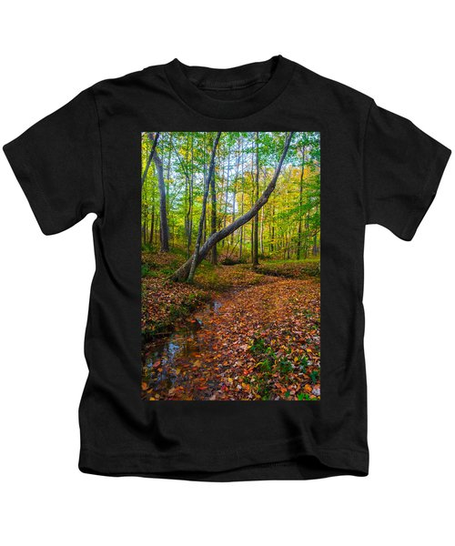 Land Of The Fairies Kids T-Shirt
