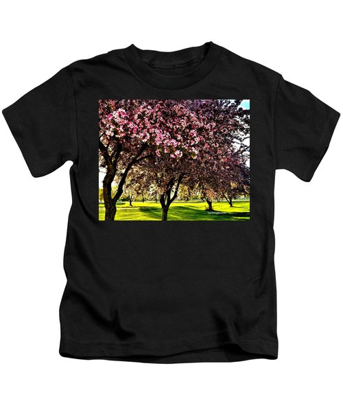 Late Afternoon At Lake Park Kids T-Shirt