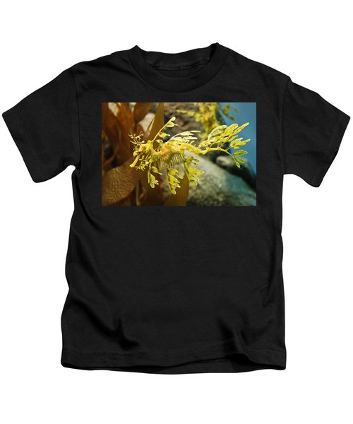 Leafy Sea Dragon Kids T-Shirt