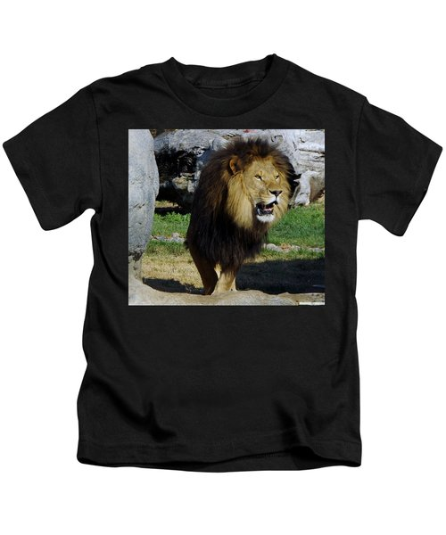 Lion 2 Kids T-Shirt