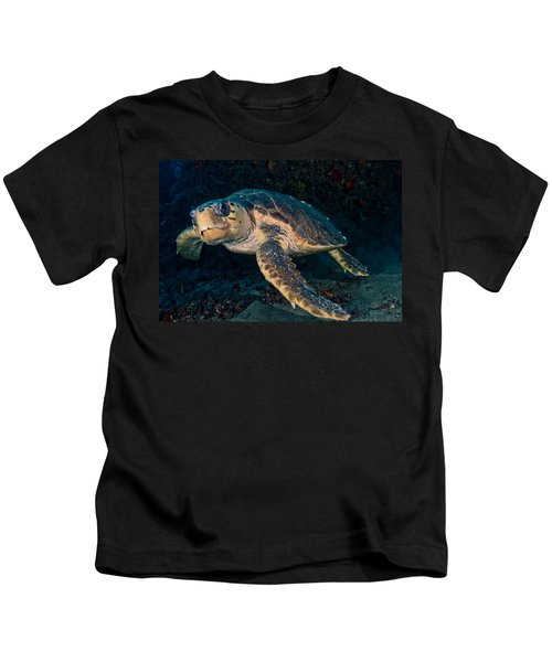 Loggerhead Turtle Under Ledge Kids T-Shirt