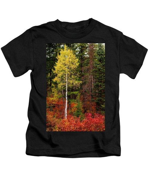 Lone Aspen In Fall Kids T-Shirt