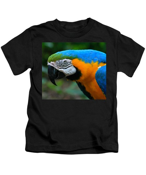Macaw With Sweet Expression Kids T-Shirt