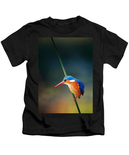 Malachite Kingfisher Kids T-Shirt by Johan Swanepoel