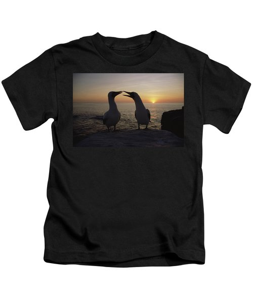 Masked Booby Couple Courting Galapagos Kids T-Shirt by Konrad Wothe