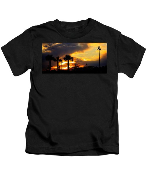 Night Fury Kids T-Shirt