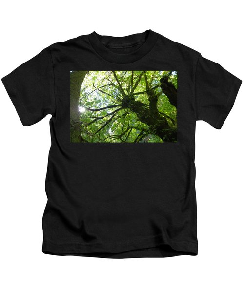 Old Growth Tree In Forest Kids T-Shirt