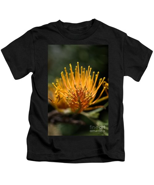 Orange Grevillea Kids T-Shirt