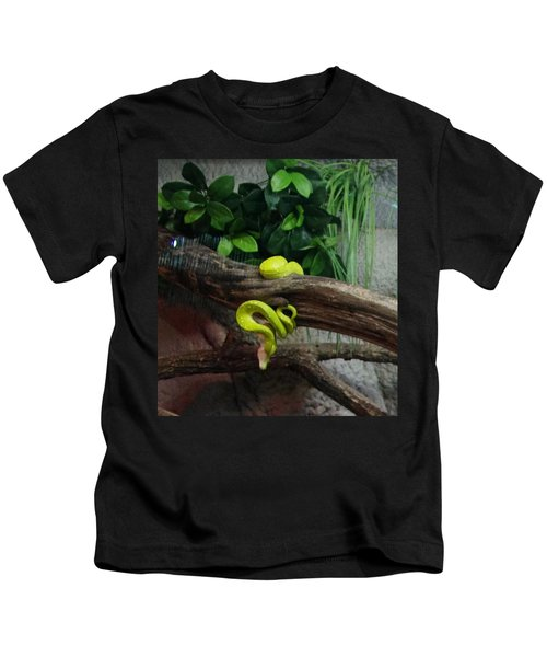 Out Of Africa Tree Snake Kids T-Shirt