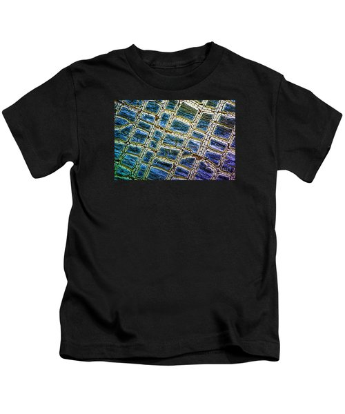 Painted Streets Number 1 Kids T-Shirt