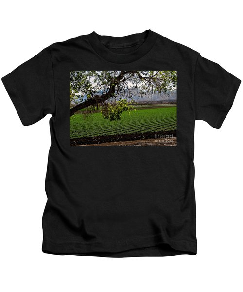 Panoramic Of Winter Lettuce Kids T-Shirt by Robert Bales