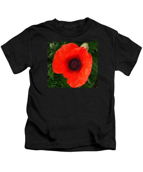 Poppy Of Remembrance  Kids T-Shirt