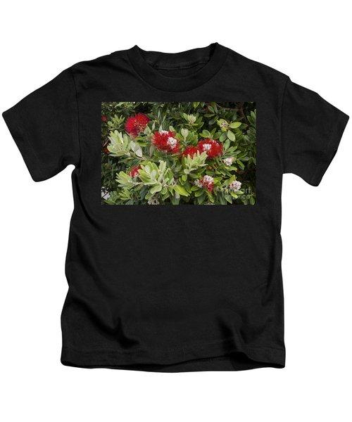 Pohutukawa Blooms Kids T-Shirt