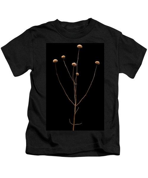 Prairie Rattlesnake Master  Kids T-Shirt