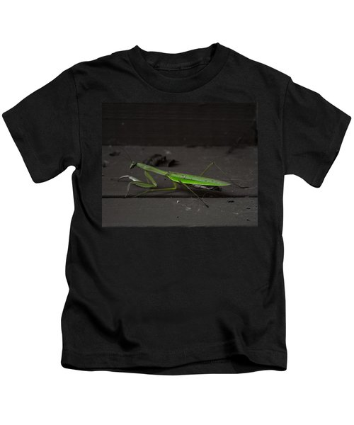 Praying Mantis 2 Kids T-Shirt