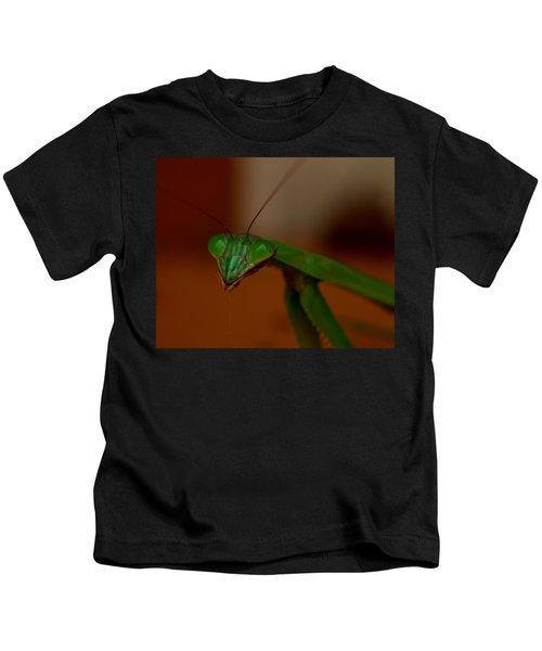 Praying Mantis Closeup Kids T-Shirt