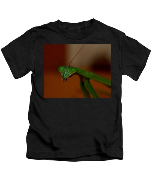 Praying Mantis Closeup Kids T-Shirt