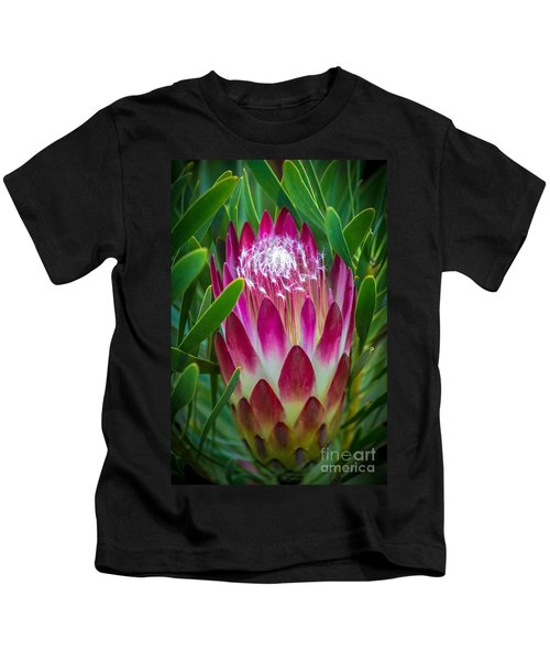 Protea In Pink Kids T-Shirt