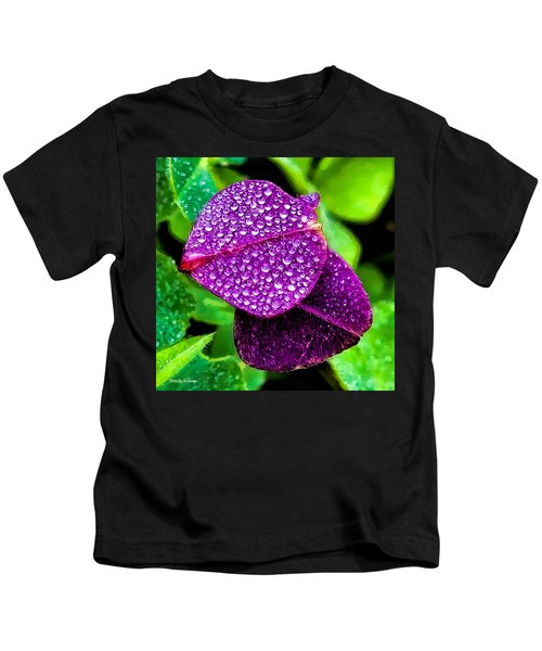 Purple Shimmer Kids T-Shirt