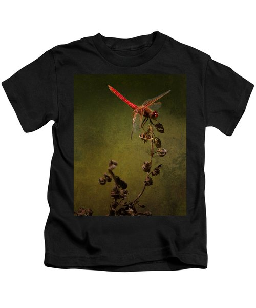 Red Dragonfly On A Dead Plant Kids T-Shirt