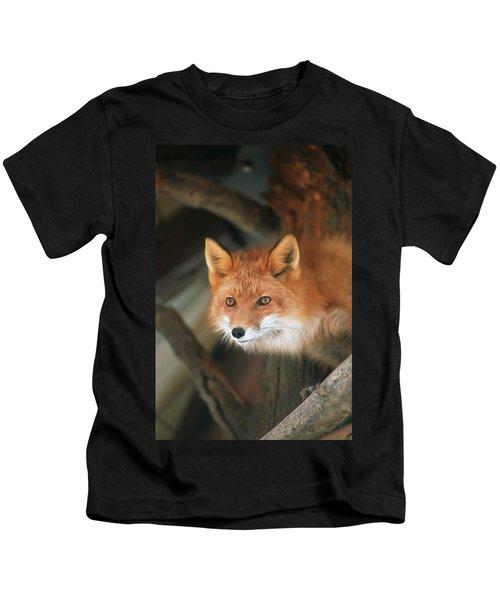 Red Fox Sitting Under A Shelter Kids T-Shirt