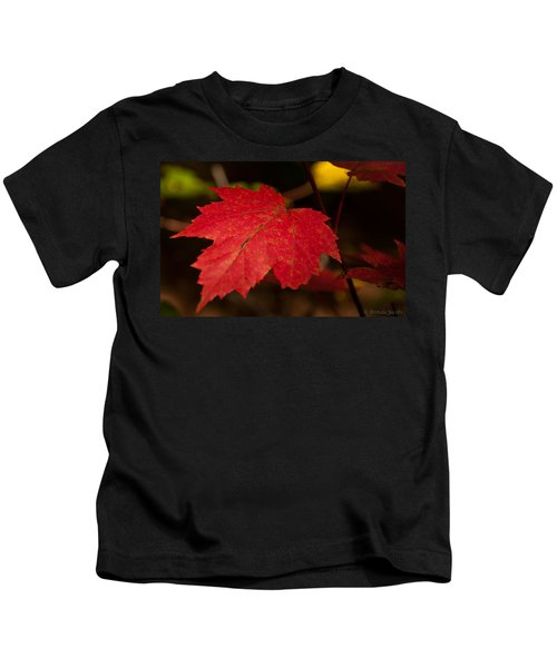 Red Maple Leaf In Fall Kids T-Shirt