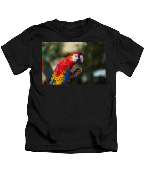 Red Parrot  Kids T-Shirt