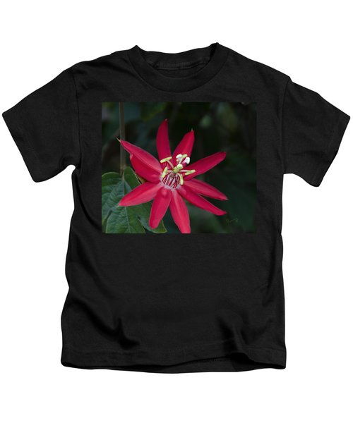 Red Passion Flower Kids T-Shirt
