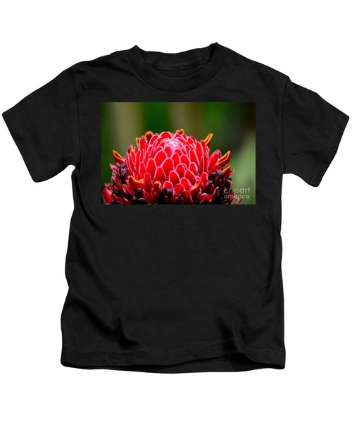 Red Torch Ginger Flower Head From Tropics Singapore Kids T-Shirt