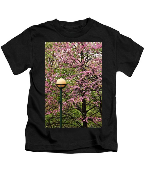 Redbud And Lamp Kids T-Shirt