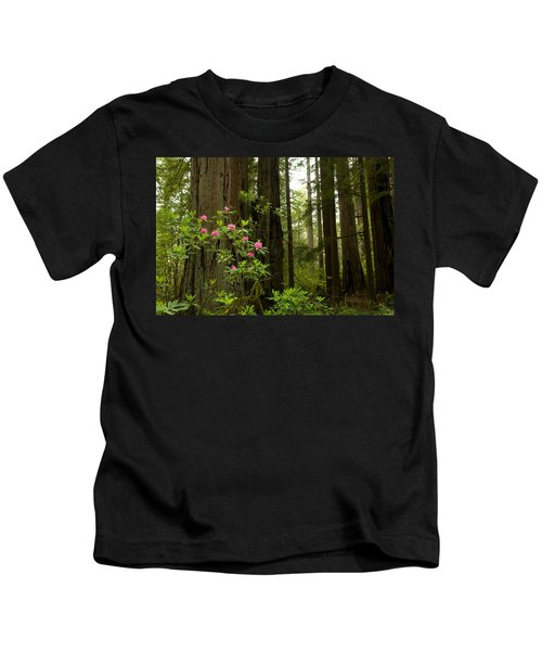 Redwood Trees And Rhododendron Flowers Kids T-Shirt