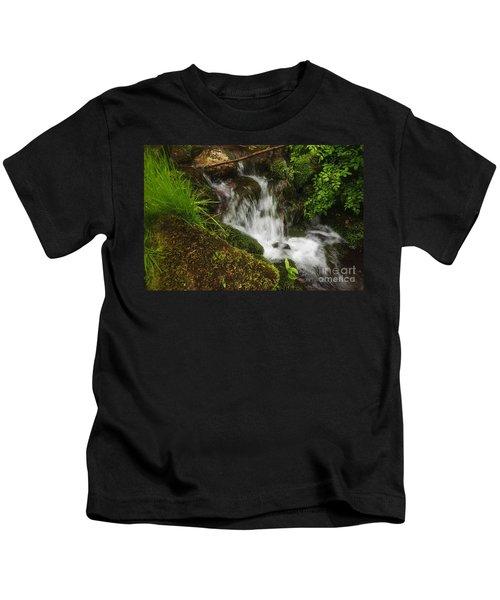Rushing Mountain Stream And Moss Kids T-Shirt