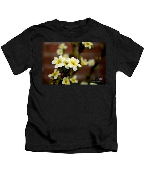 Sisyrinchium Striatum Kids T-Shirt